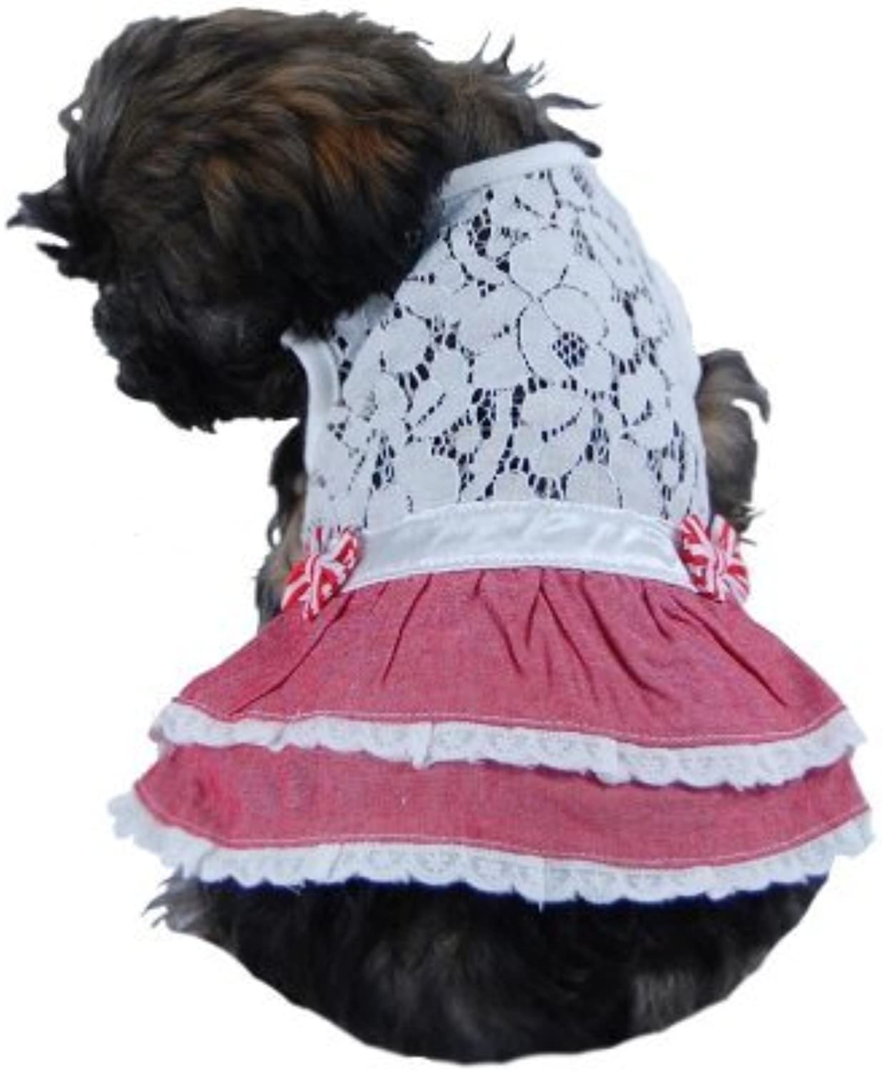 Anima AN13304M Lace Top with Bow Skirt Pet Clothes, Medium, White Red