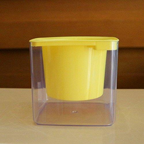 Carré Lazy d'arrosage automatique Fleur jacinthe Vert Plant-free solubles Plastique Transparent Pots de fleur de coton, jaune, Small