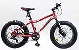 Fahrrad Fat Bike 20 Zoll Alu-Rahmen – Doppelscheibe – Shimano 6 Gänge über Push-Griff + Headset Vorbau