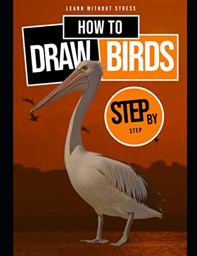 Learn Without Stress How To Step By Step Draw Birds