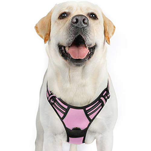 rabbitgoo Dog Harness,No-Pull Pet Harness with 2 Leash Clips, Adjustable Soft Padded Dog Vest, Reflective No-Choke Pet Oxford Vest with Easy Control Handle for Large Dogs, Pink, XL