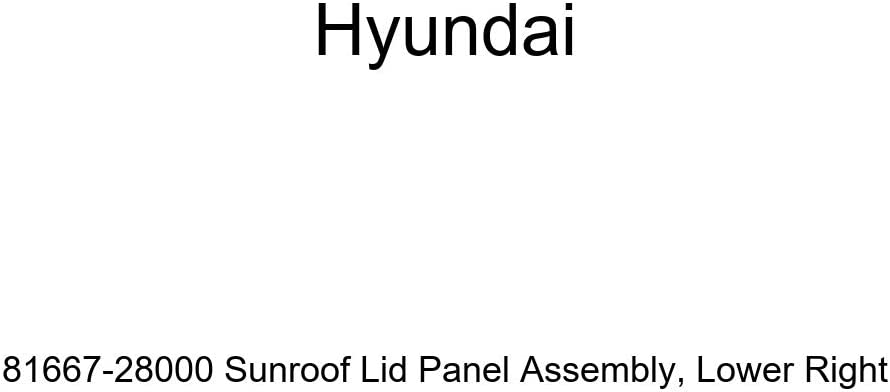 Limited time sale Genuine Max 82% OFF Hyundai 81667-28000 Sunroof Lid Ri Panel Assembly Lower