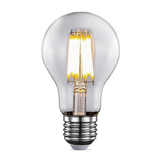 TRANSTEC® Edison Bulb エジソンバルブ型 梨型フィラメントLED電球A60 口金E26 交流100-120V 電球色 透明ガラス インテリア照明 ホーム照明 器具装飾用(8w 1個入)