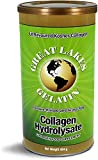 Great Lakes Gelatin Collagen Hydrolysate 454g (UK/EU Compliant can)