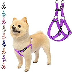 Bester Laufgeschirr für Beagles - Halten Sie Ihren Welpen sicher