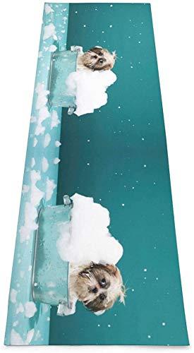 Toalla De Yoga Antideslizante,Bañador E Impresión De Perros Eco-Friendly Fitness Exercise Mat,Alfombras De Meditación,Ejercicios De Piso Impresos &Pilate Fitness Mat Para Mujer 183×61cm