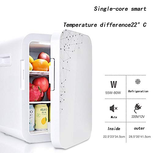 Great Features Of LIJING Mini Fridge Portable,Quiet Single Dual Core Refrigeration System Dual-use...