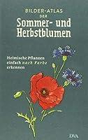 Bilder-Atlas der Sommer- und Herbstblumen: Heimische Pflanzen einfach nach Farbe erkennen