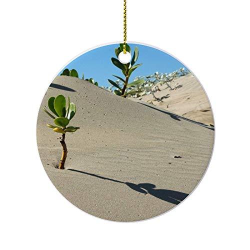 happygoluck1y Afrika-Wüsten-Scaevola-Pflanzen-Ornamente für Weihnachtsbaum, runde Porzellan-Ornamente, 7,6 cm, Andenken, Weihnachtsschmuck, Bauernhaus, Weihnachtsdekoration, für Zuhause