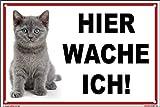 kleberio® - Hier wache ich! - Katzen Schild Kunststoff 20 x 30 cm mit Bohrlöchern thumbnail