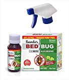 Green Dragon's Bomber Bed Bug & Mite Killer Concentrate Make 600 ml Ready