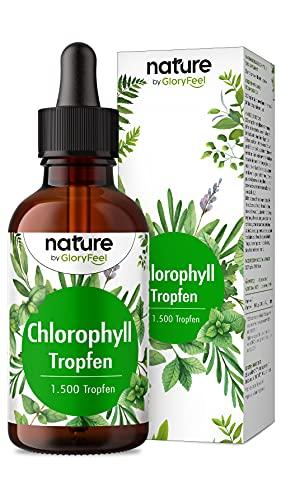 Chlorophyll Tropfen - 50ml flüssig aus reinem Alfalfa - 200mg Liquid Chlorophyll je Tagesdosis - Laborgeprüft, vegan und ohne Zusätze in Deutschland hergestellt