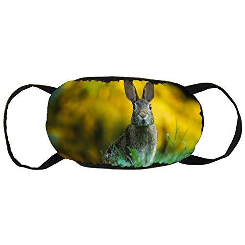 Unisex Mond Masker Anti-Stof Gezicht Mond Masker, Konijn Veiligheid Herbruikbare Katoen Gezicht Masker voor Outdoor Sporten, Tuinieren, Reizen