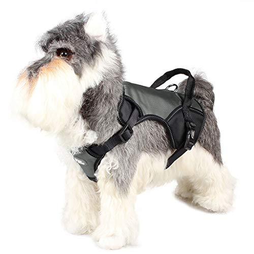 XIAO Perros Pecho Arnés,Acolchado Seguridad Chaleco Cabestro Cinturón Seguridad Perro para Ejercicio Caminar Formación Corriendo Resistente para Entrenamiento Caminar,C,L