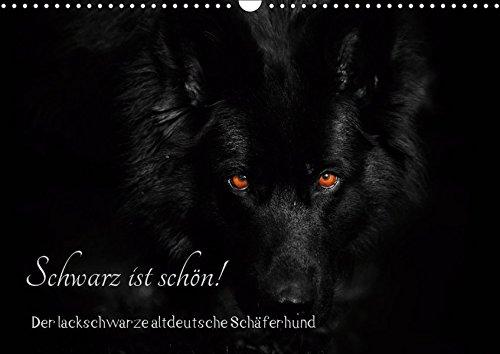 Schwarz ist schön! Der lackschwarze altdeutsche Schäferhund (Wandkalender 2019 DIN A3 quer): Der...