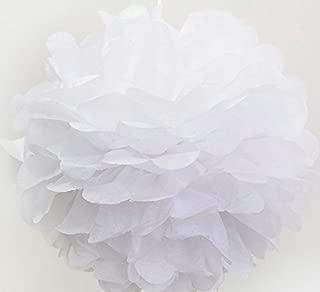 Kubert New design DIY Tissue Paper Pom-poms Flower Ball Hanging decoration pom poms / 10 Pack 10 Inch Tissue Paper Flower Ball Pom-poms For Party/Wedding / Home (White)