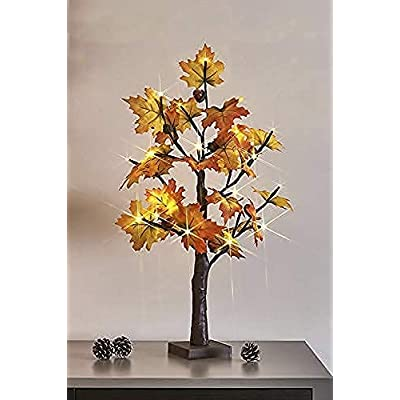 EAMBRITE 2FT 24LT led Fall Maple Tree Lighted T...