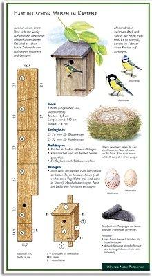 Habt ihr schon Meisen im Kasten - Blaumeise - Kohlmeise - Bauanleitung für einen Meisenkasten - Nistkasten - Wawra Naturpostkarte zum Entdecken, Beobachten, Bestimmen - 22 cm x 12 cm