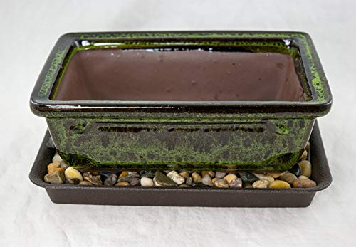 8' Rectangular Moss Green Bonsai / Succulent Pot + Tray + Rock + Mesh Combo