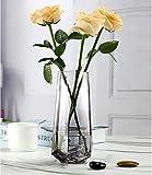 Ins Style - Vaso per fiori in vetro trasparente, realizzato a mano, per fiori e piante idroponiche, matrimoni, feste di inaugurazione della casa, ufficio, decorazione