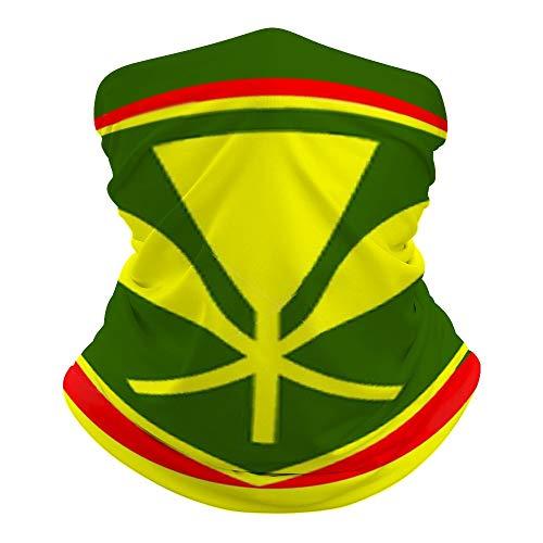 Kanaka Maoli - Native Hawaiian Flag Face Mask Bandana Cooling Neck Gaiter Summer Breathable UV Dust Protection Balaclava Face Cover for Outdoor Sports
