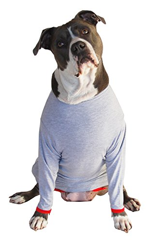 POPforPETS Post Operative Protection Shirt for Dogs (Small)