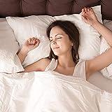 Acne Pillowcase, Silver Anti-Acne Pillow Case with Silver Technology, Silver Pillowcase Acne to Maintain Cleaner Skin While You Sleep19.7''30'' (1)