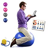 Homecircles Yoga Ball Chairs for The Office - 65cm Premier Anti-Burst Yogaball with PDF Exercise Ball Guide, Gym Quality Balance & Stability Ball Chair for Office - Blue