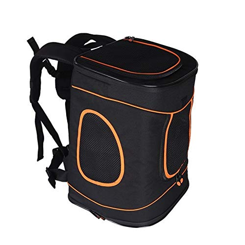 ABISTAB Hundebox faltbar Transportbox Hunde und Katze Transporttasche für Auto- und Flugreisen geeignet Tragetasche Rucksack Spazi mit Komfort und Sicherheit robuster: Schwarz-Orange