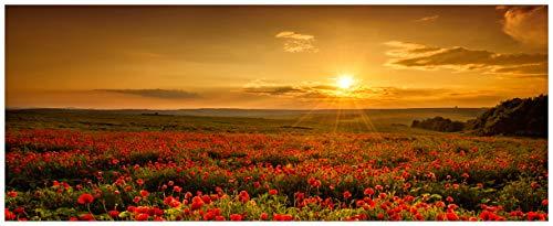 Wallario Acrylglasbild Mohnblumenwiese bei Sonnenuntergang am Abend - 50 x 125 cm in Premium-Qualität: Brillante Farben, freischwebende Optik
