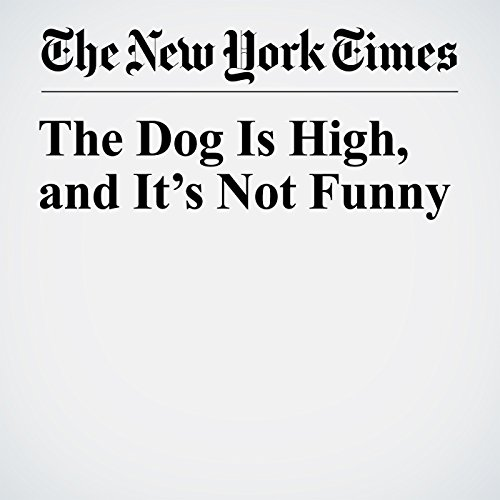 The Dog Is High, and It's Not Funny copertina