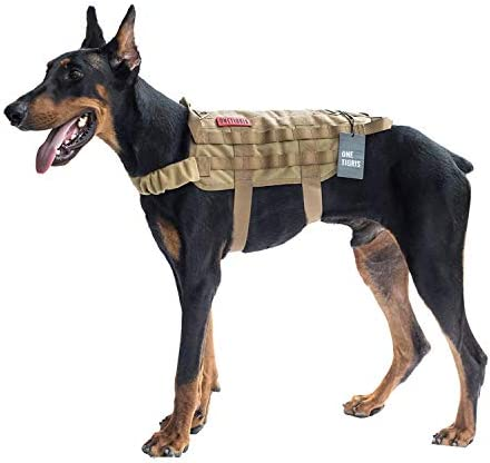 Top 10 Best hiking vest for dogs