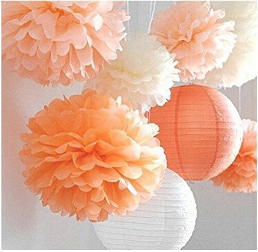 Since Set of 8 Pcs Mixed Peach Ivory Orange Tissue Paper Pom Poms Pompoms and Paper Lantern Wedding Birthday Party Baby Girl Room Decoratio
