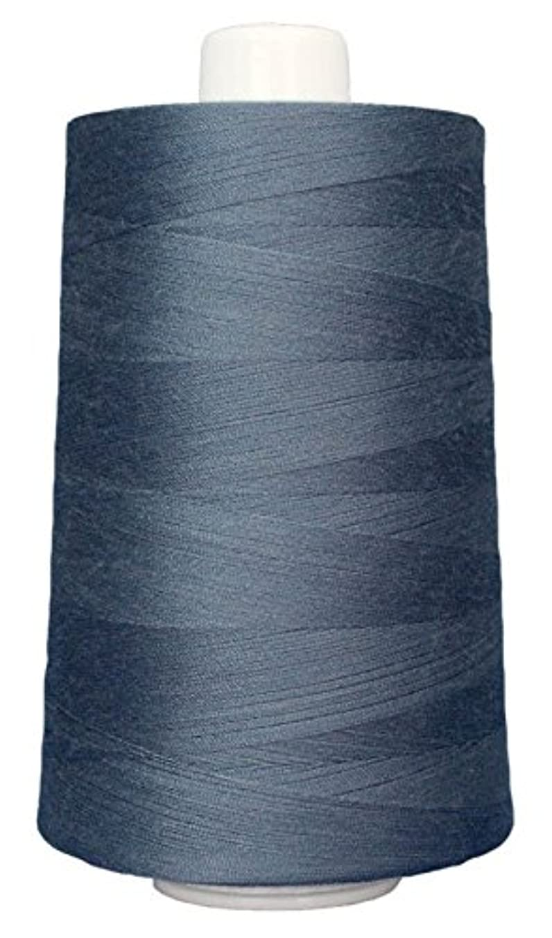 Superior Threads 13402-3111 Omni Big Springs 40W Polyester Thread, 6000 yd