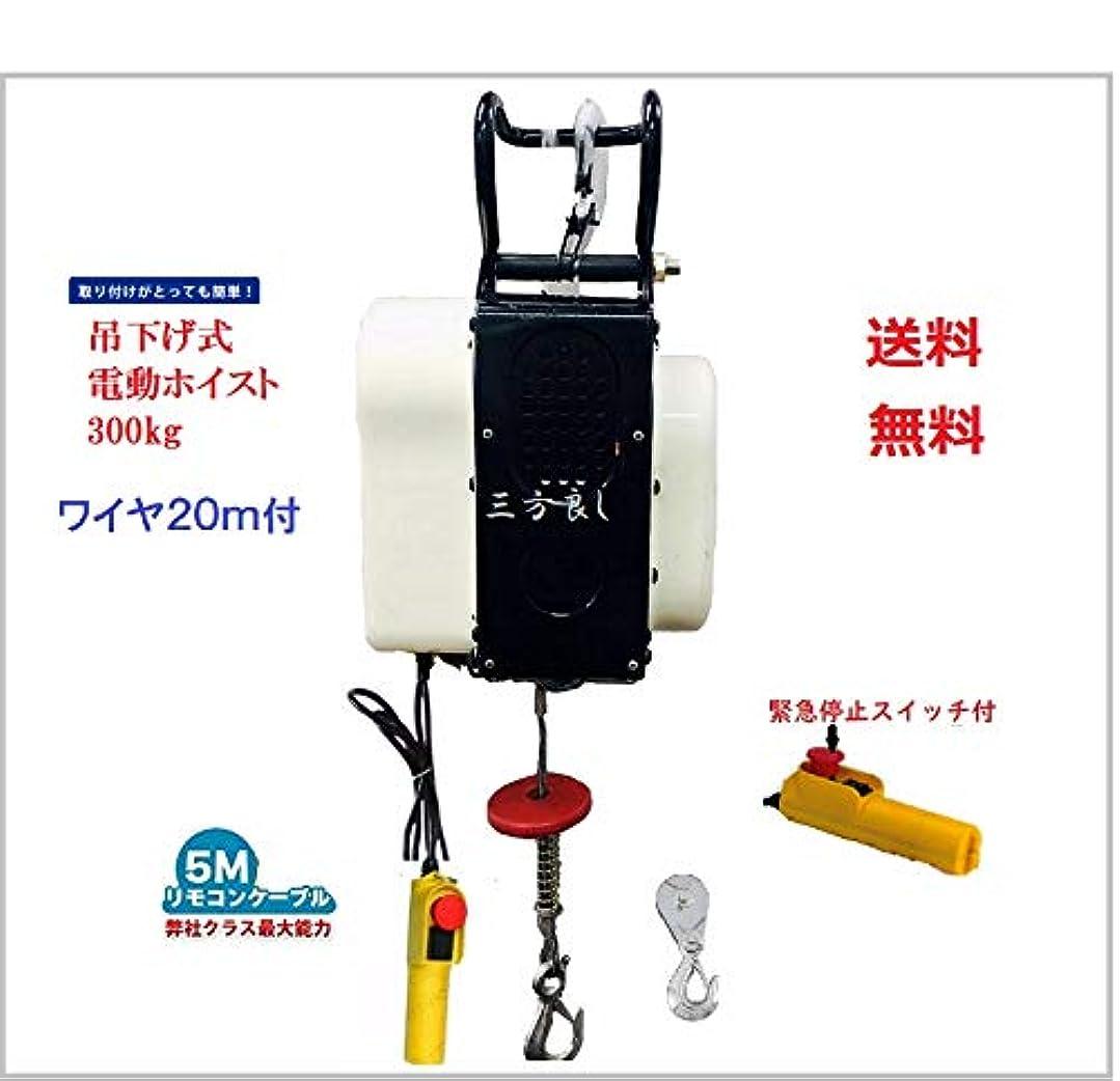 ずんぐりしたズーム幻滅する【三方良し】家庭用100V50Hz/60Hz電動ウインチ(ホイスト)(最大能力300kg)ワイヤー20M 小型電動ウインチ 吊り下げタイプ