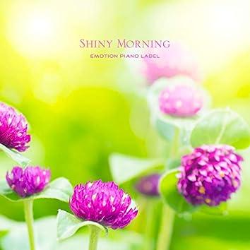 Shiny Morning