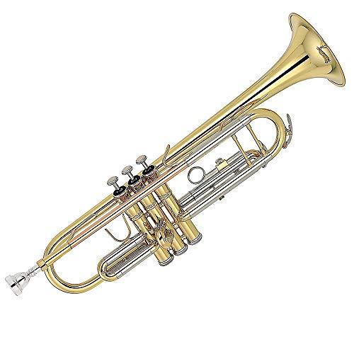 KOUPA : Trompeta Dorada Trompeta BB estándar de latón, para Estudiantes Principiantes con Estuche rígido, Guantes, Boquilla 7C, Aceite de válvula y Kit de Limpieza de Trompeta