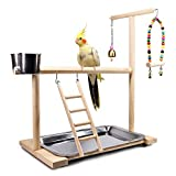 Dbeans Flourithing Bird Playground Parrot Playstand, Bird Play Stand with Feeder Seed Cups, Ladder Hanging Swing Chew Exercise Toys, for Conure Macaw Cockatiel Finch Small Animals