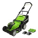Greenworks Tondeuse à Gazon sans Fil, 2 x 24V 41cm, Hauteur de Coupe 25-80mm, Accoudoir Pliable, avec Poche de Ramassage d'herbe 40 L (avec 2 x 2Ah Batteries et Chargeur)