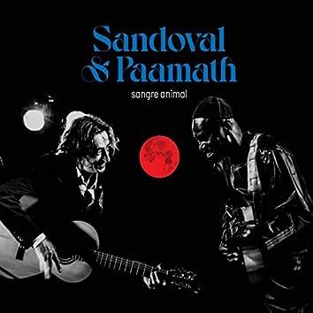 Sandoval & Paamath Sangre Animal