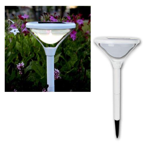 Best Season 479–21 LED Lampe Solaire Chemin, 45 x 20 cm, 1 Blanc Chaud LED avec Panneau Solaire et Batterie, Outdoor, Carton coloré Style Blanc