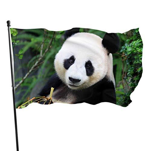 Florasun Drapeaux géant Panda Mangez des feuilles de bambou décorées Drapeaux de filles Décorés 3 x 5 pieds Couleurs vives en polyester et laiton de qualité