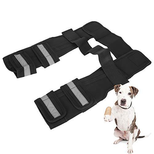SALUTUY Soporte de Pierna Frontal canino para Perro, Soporte de Pierna de Perro 1 Pieza Protectora para Pierna Protege heridas para la articulación del corvejón Frontal para Perros(L)