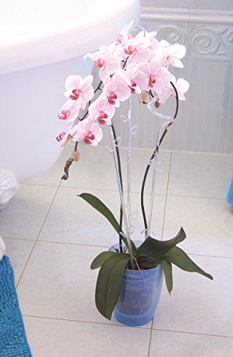 Pot de fleurs rond Orchidée – Lotex24 Coubi Duow – Bleu – 13 cm -