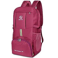 40L Ultralight Foldable Backpack, Waterproof Hiking Backpacks Multipurpose Travel Backpack Daypack for Hiking Biking Trekking Climbing Mountaineer Camping School Leisure (Purple)