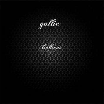 Gallicus