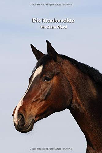 Die Krankenakte für Dein Pferd: Warmblut - Dokumentiere mit einer sinnvollen Vorlage schnell und einfach die Krankheiten / Verletzungen Deines Pferdes