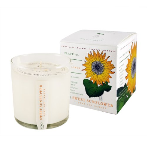 Sweet Sunflower Soy Candle with Plantable Box