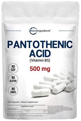 Micro Ingredients Pantothenic Acid Vitamin B5 Supplement, Vitamin B5 500mg Per Count, 365 Capsules, B-Complex Vitamin, Non-GMO