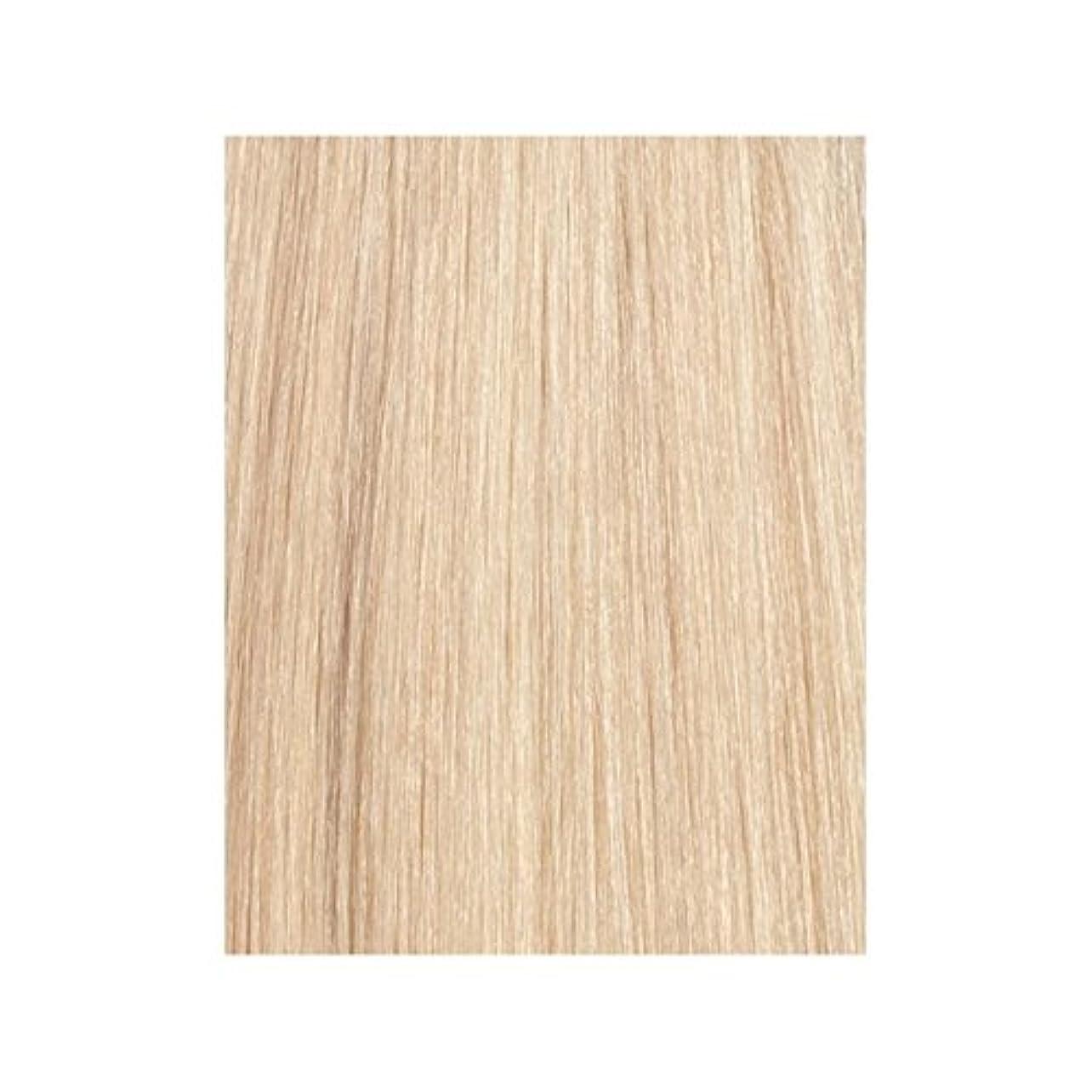 機関多様なペアBeauty Works 100% Remy Colour Swatch Hair Extension - La Blonde 613/24 - ラ?ブロンド24分の613 - 美しさは、100%レミーの色見本ヘアエクステンションの作品 [並行輸入品]